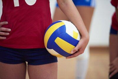 Картина волейбол женщина группа