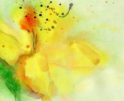 Картина акварель фон с желтой лилии. Картина на бумаге.