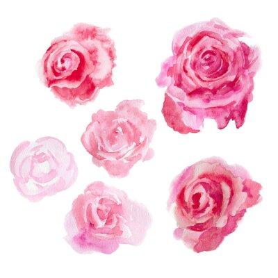 Картина Акварельные цветы. Розы