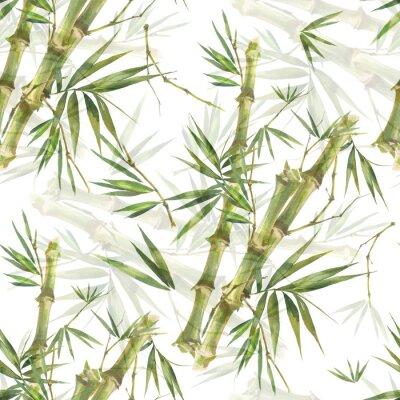 Картина Акварельные иллюстрации листьев бамбука, бесшовный узор на белом фоне