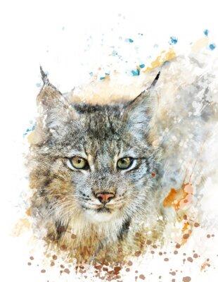 Картина Watercolor Image Of Lynx