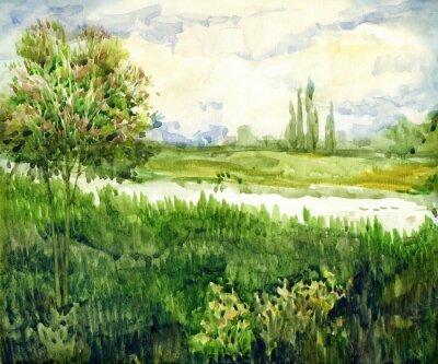 Картина Акварельный пейзаж. Молодой дерево на лугу возле реки