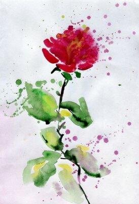 Картина акварель красная роза.