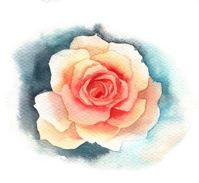Картина Watercolor rose