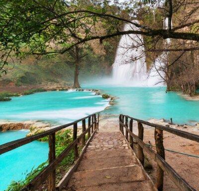 Картина Водопад в Мексике