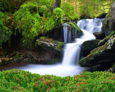 Картина Водопад в национальном парке Шумава-Чехия