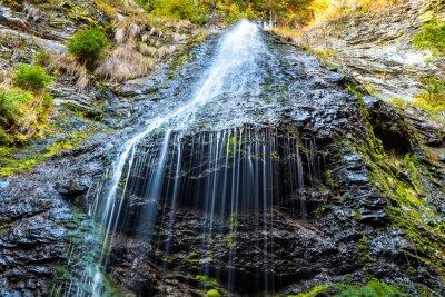 Картина Водопад в диком лесу