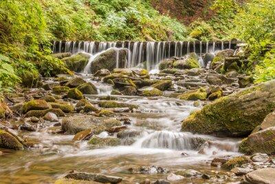 Картина Водопад шипы.