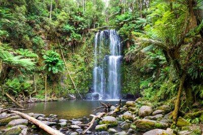 Картина водопад Тасмания