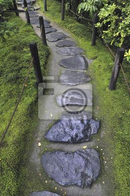 мокрый камень путь