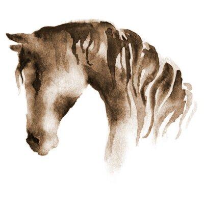 Картина Влажная акварель Конская. Ручная роспись коричневой лошади на белом фоне.