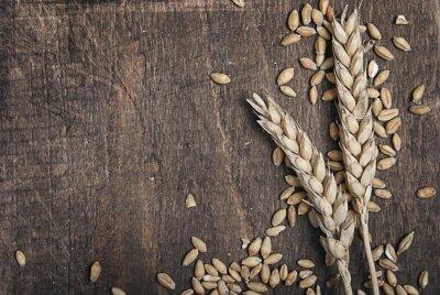 Картина Колосья пшеницы