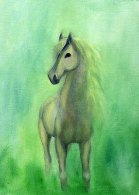Картина White stallion