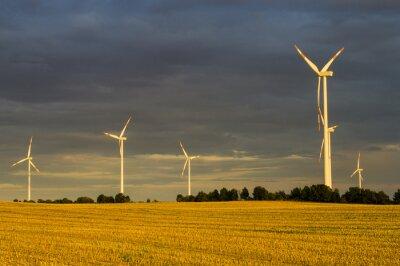 Картина Wiatraki (Турбиных wiatrowe) W świetle wschodzącego słońca
