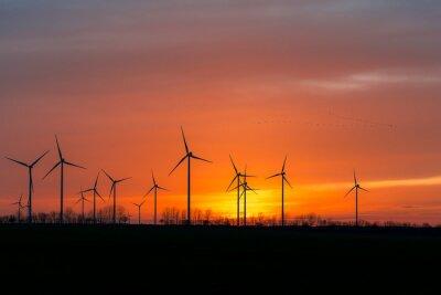 Картина Windräder в дер Natur мит Vogelschwarm-им Sonnenuntergang