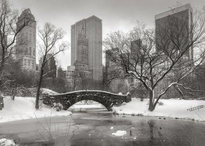 Картина Зимняя сцена в Манхэттене: Пруд, Gapstow мост и Manhatta