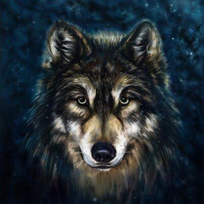 Картина волк спереди