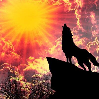 Картина волк в силуэт вой в полнолуние
