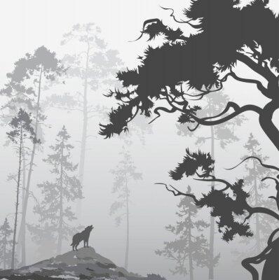 Картина Волк в лесу