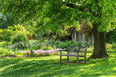 Картина wooden bench at flower garden park