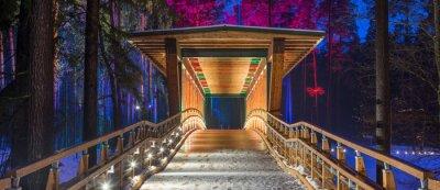 Картина Деревянный мост в лесопарке. Ночные разноцветные огни.