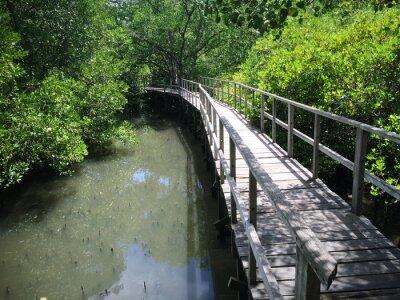 Картина Деревянный мост на Риверсайд