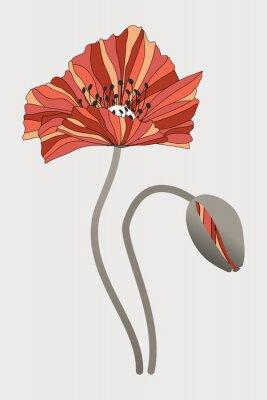 Картина бутон  и цветок мака с необычными лепестками