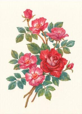 Картина Букет с цветами шиповника, акварель.