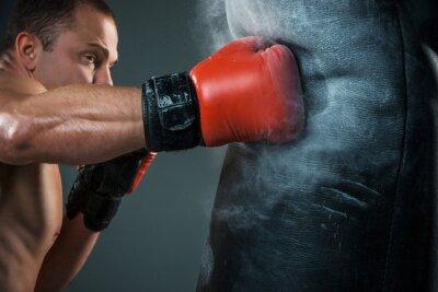 Картина Молодой боксер бокс