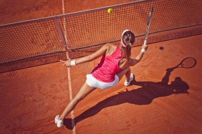 Картина Молодая женщина, играя tennis.High угол view.Forehand залп.