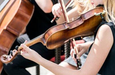 Картина молодая женщина играет на скрипке