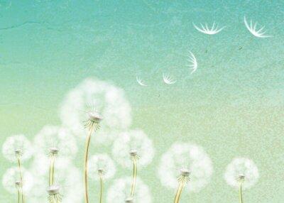 Фотообои Абстрактный фон с цветком одуванчика