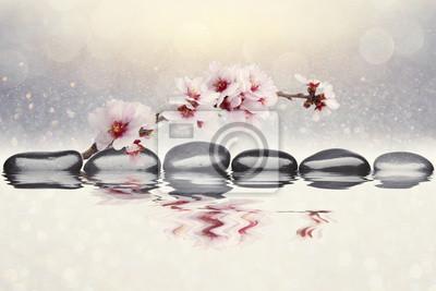 Фотообои миндаль фон цветы