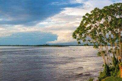 Фотообои Amazon Ривервью