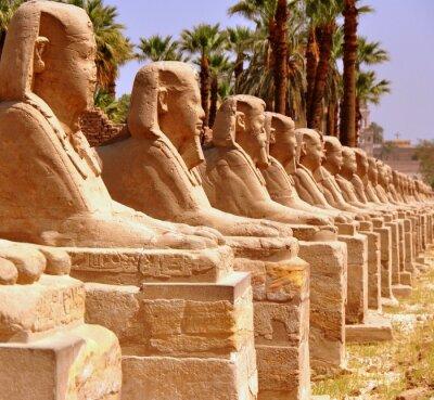 Фотообои Амон Темпеля фон Luxor