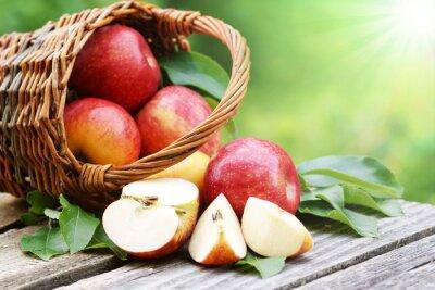 Фотообои Äpfel им Körbchen мит Sonne