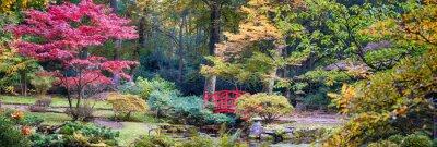 Фотообои Осень в японском парке, панорама