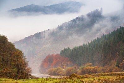 Фотообои Осенний дождь и туман в горах. Цветной фон осеннего леса