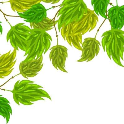 Фотообои Фон из стилизованных зеленых листьев для открыток