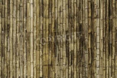 Фотообои Бамбуковый фон забор