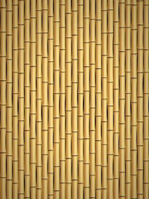Фотообои Бамбук шаблон