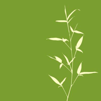 Фотообои Бамбук силуэт на зеленом фоне