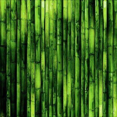 Фотообои Бамбук стены