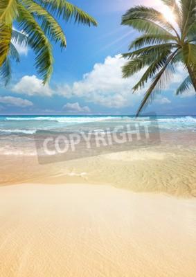 Фотообои Пляж ладони