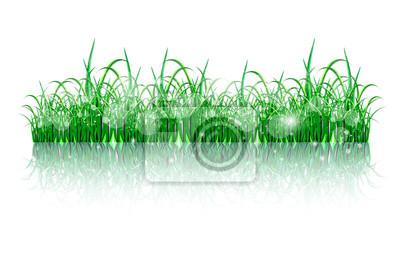трава остров картины стене • картины ...: https://myloview.ru/image-beatiful-green-grass-island-no-224df2