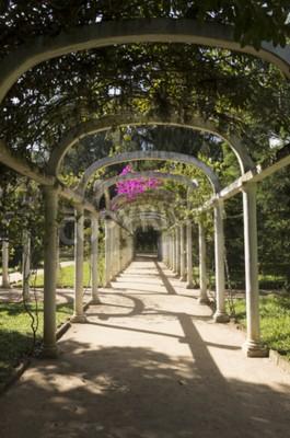 Фотообои Красивые арочные Пергола бесконечный путь в Ботанический сад, Рио-де-Жанейро, Бразилия
