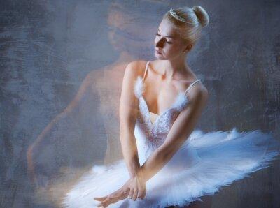 Фотообои Красивая балерина