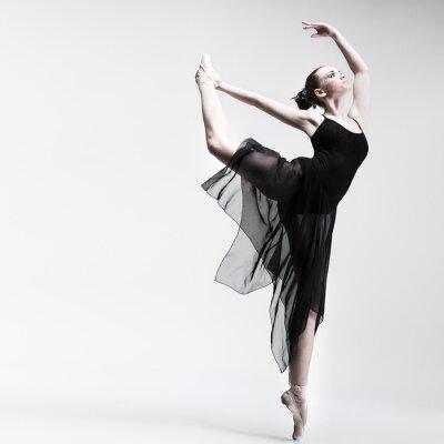 Фотообои Красивая балерина, создавая на фоне студии