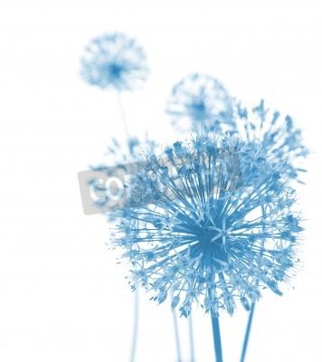 Фотообои Красивые голубые цветы / абстрактные композиции на белом фоне