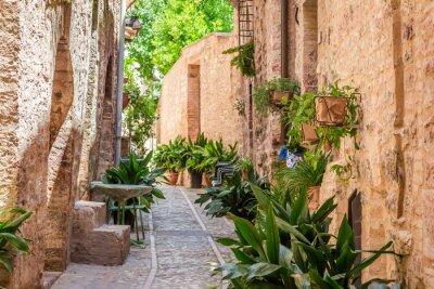 Фотообои Красивый оформленный крыльцо в небольшом городке в Италии в солнечный день, Умбрия